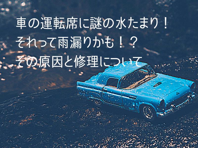 wet-a-car