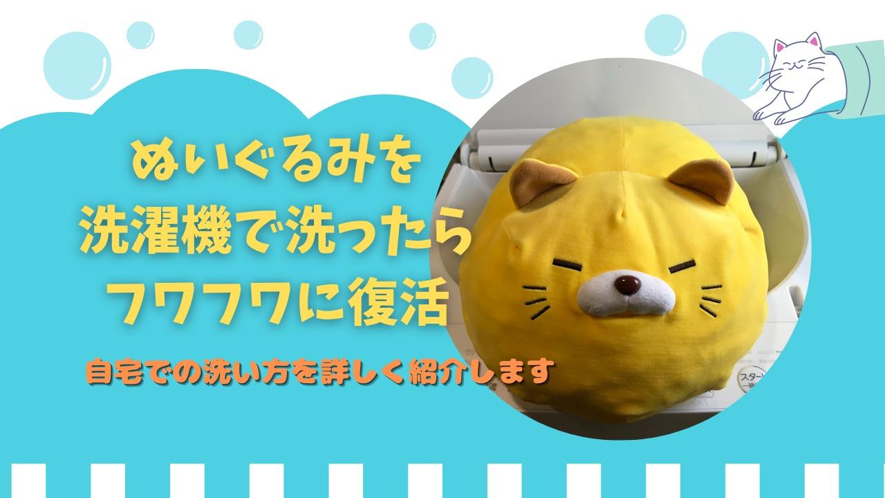 machine-wash-the-stuffed-animal